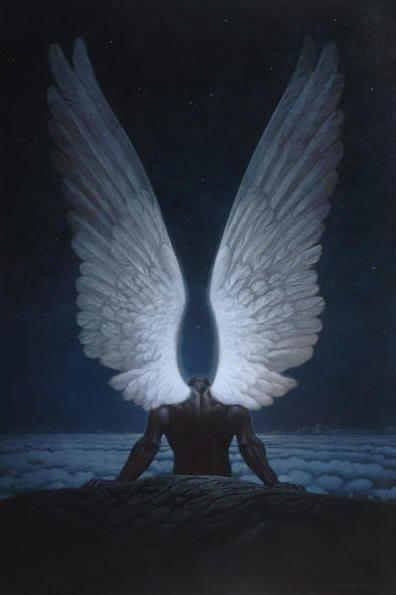 angel-lg