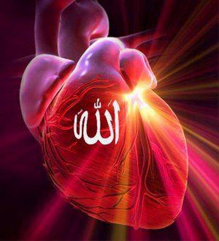 Jantung Allah merah