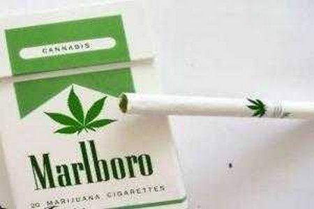 Rokok rasa ganja