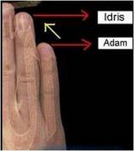 Jari idris dan Adam