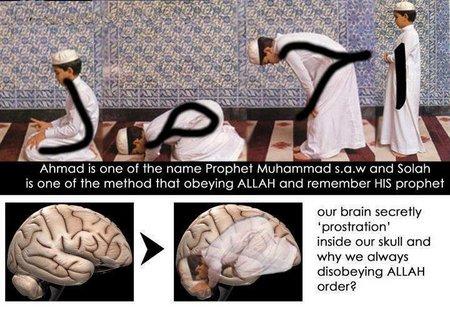 sholat dan otak juga bersujud .....