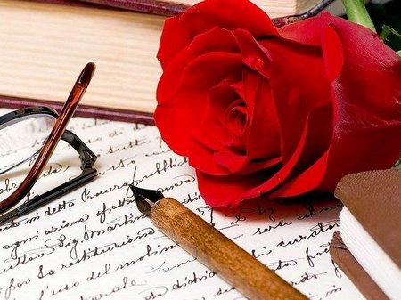 Surat rose