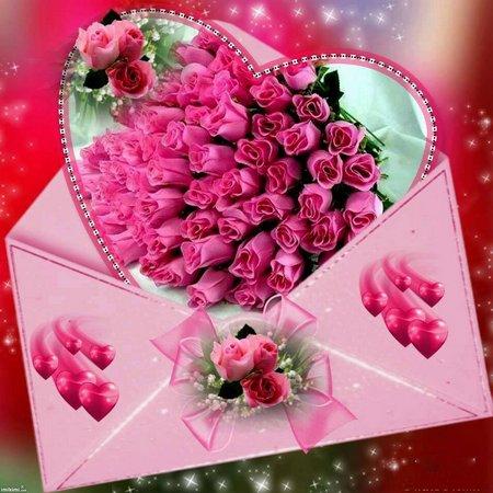 Amplop pink rose