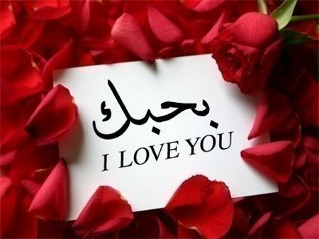 i love u arab