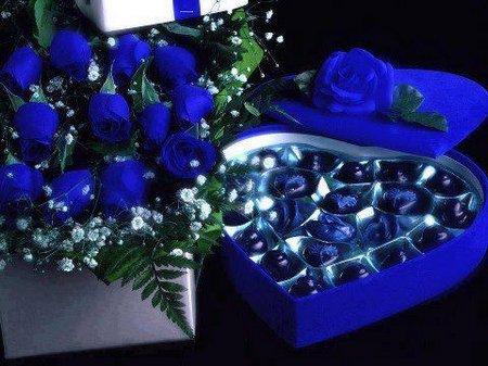 Rose biru coklat