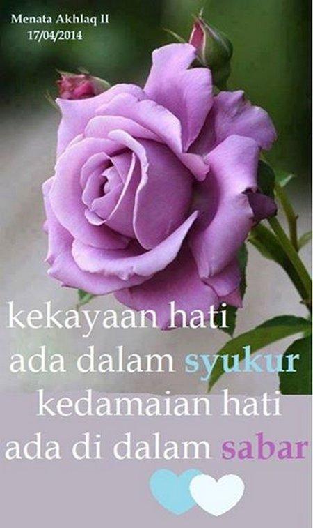 Syukur rose