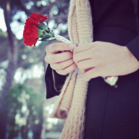 Tangan Rose