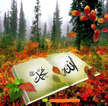 Allah muhammad buku