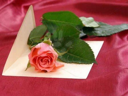 Amplop -dan-mawar