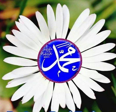 Muhammad bunga dahlia putih