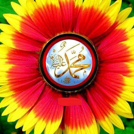 Muhammad bunga matahari