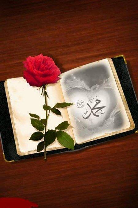 Muhammad diary buku