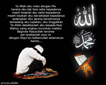 Sunnah setia