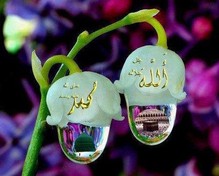 Allah muhamad embun