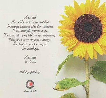 Jilbab matahari