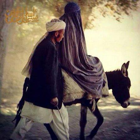 Cadar dan suami naik kuda