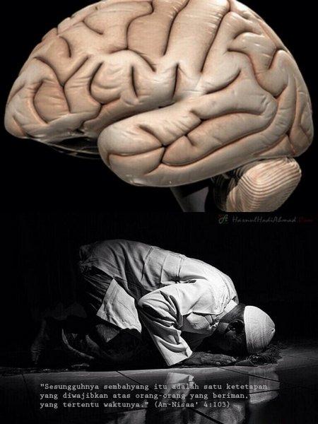 Otak bersujud 1