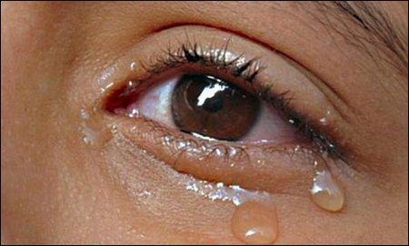 Air mata dipelupuk