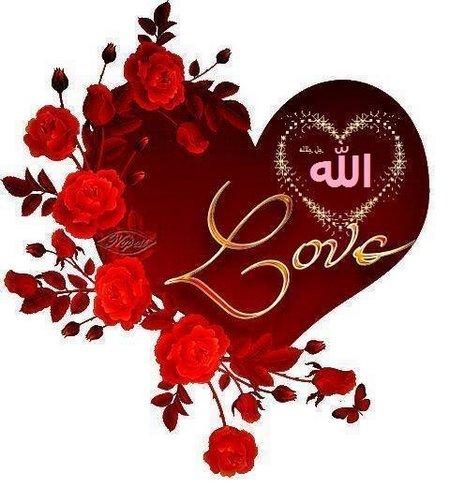 Love Allah rose