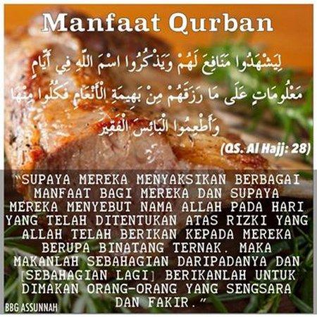 Qurban dan manfaat nya