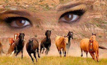 Mata Kuda