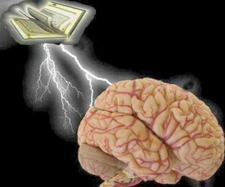 Otak quran