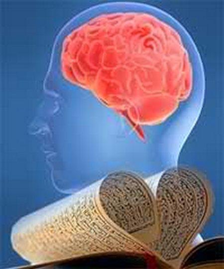 Otak quran manusia