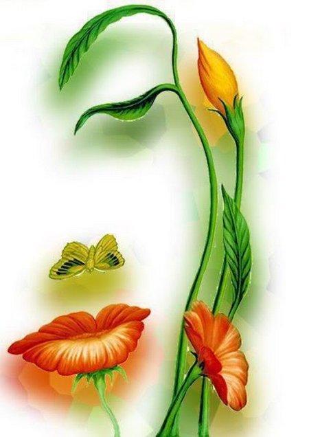 Bunga wajah