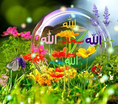 Allah bunga dan dalam gelembung