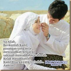 Pasangan setia