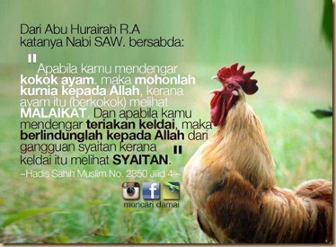 Ayam dan hadist