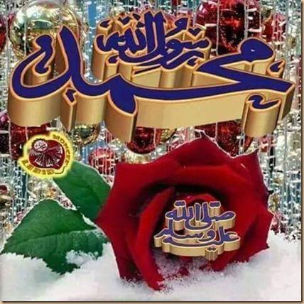 Muhammad love G