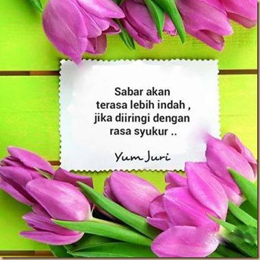 Sabar dan syukur tulip